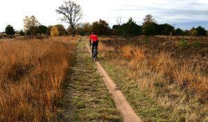 Zondag 31 oktober: Stratumse Heidetocht 79 km 'Gravelride'